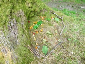 Andy Goldsworthy 022